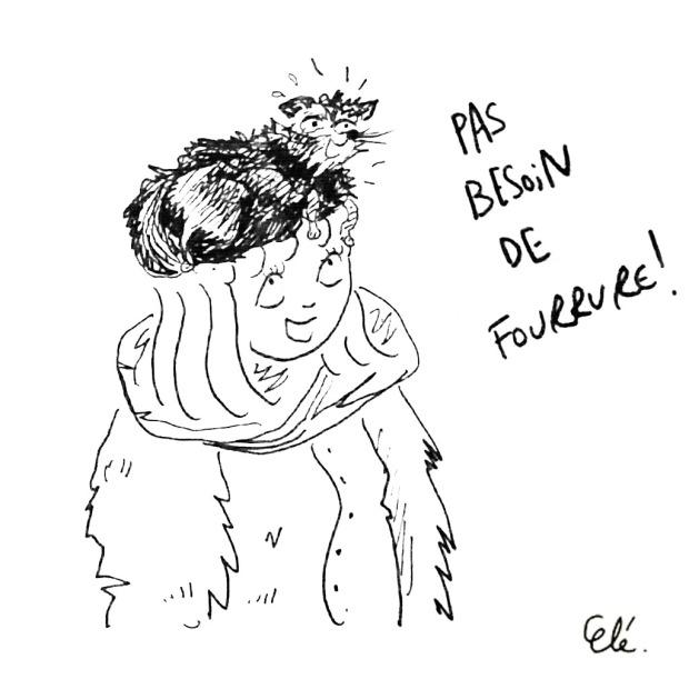 fourrure3
